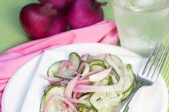 κόκκινη σαλάτα κρεμμυδιών Στοκ Εικόνα