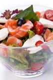 κόκκινη σαλάτα ψαριών στοκ εικόνα