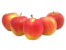 κόκκινη σειρά μήλων Στοκ Εικόνα