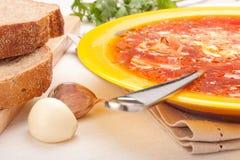 κόκκινη σούπα πιάτων τεύτλω στοκ εικόνα με δικαίωμα ελεύθερης χρήσης