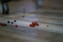 Κόκκινη σταφίδα στο ξύλινο πάτωμα Στοκ Εικόνα