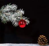 Κόκκινη σφαίρα διακοσμήσεων Χριστουγέννων με το δέντρο έλατου και τον κώνο πεύκων Νέα κάρτα ύφους χωρών ετών εκλεκτής ποιότητας Στοκ φωτογραφία με δικαίωμα ελεύθερης χρήσης