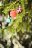 Κόκκινη σφαίρα Χριστουγέννων fir-tree στον κλάδο υπαίθριο Στοκ εικόνες με δικαίωμα ελεύθερης χρήσης