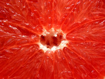 κόκκινη σύσταση γκρέιπφρουτ Στοκ Εικόνα