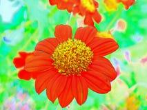 Κόκκινη τέχνη λουλουδιών ελεύθερη απεικόνιση δικαιώματος