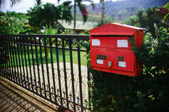 Κόκκινη ταχυδρομική θυρίδα στους τροπικούς κύκλους Στοκ φωτογραφία με δικαίωμα ελεύθερης χρήσης