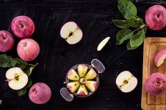 Κόκκινη τοπ άποψη συστατικών μαρμελάδας μήλων Στοκ εικόνα με δικαίωμα ελεύθερης χρήσης