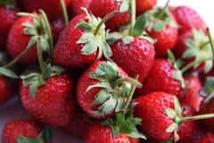 Κόκκινη φράουλα μούρων που απομονώνεται στο άσπρο υπόβαθρο Στοκ φωτογραφίες με δικαίωμα ελεύθερης χρήσης