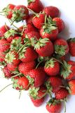 Κόκκινη φράουλα μούρων που απομονώνεται στο άσπρο υπόβαθρο Στοκ εικόνες με δικαίωμα ελεύθερης χρήσης