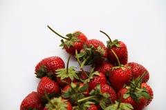 Κόκκινη φράουλα μούρων που απομονώνεται στο άσπρο υπόβαθρο Στοκ φωτογραφία με δικαίωμα ελεύθερης χρήσης