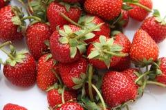 Κόκκινη φράουλα μούρων που απομονώνεται στο άσπρο υπόβαθρο Στοκ Φωτογραφίες
