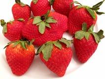 κόκκινη φράουλα ομάδας Στοκ Εικόνα