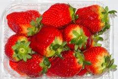 κόκκινη φράουλα ομάδας Στοκ φωτογραφία με δικαίωμα ελεύθερης χρήσης