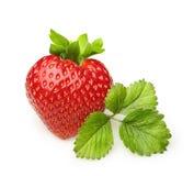 κόκκινη φράουλα φύσης λεπτομερειών μούρων Στοκ εικόνες με δικαίωμα ελεύθερης χρήσης