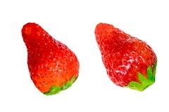 Κόκκινη φράουλα μούρων που απομονώνεται σε ένα άσπρο υπόβαθρο Στοκ εικόνες με δικαίωμα ελεύθερης χρήσης