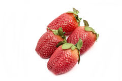 Κόκκινη φράουλα μούρων που απομονώνεται Στοκ Εικόνα