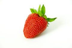 Κόκκινη φράουλα μούρων σε ένα ελαφρύ υπόβαθρο Στοκ εικόνα με δικαίωμα ελεύθερης χρήσης