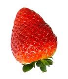 κόκκινη φράουλα φύσης λεπτομερειών μούρων Στοκ φωτογραφία με δικαίωμα ελεύθερης χρήσης