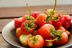 Κόκκινη φράουλα Στοκ φωτογραφίες με δικαίωμα ελεύθερης χρήσης