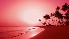 Κόκκινη φυσική αυγή πέρα από την παραλία νησιών φοινικών θάλασσας Δομινικανή Δημοκρατία Punta Cana του Ατλαντικού Ωκεανού απόθεμα βίντεο