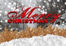 Κόκκινη Χαρούμενα Χριστούγεννα με πιό blurrforest και το χιόνι και τα φύλλα Στοκ Εικόνες