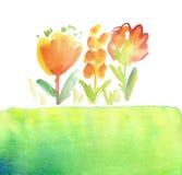 Κόκκινη floral αγροτική συρμένη χέρι απεικόνιση Στοκ Εικόνες