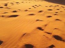 Κόκκινοι αμμόλοφοι ερήμων άμμου Στοκ Φωτογραφία