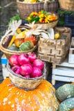 Κόκκινοι γρανάτες και κολοκύθες Αγορά φρούτων Στοκ Φωτογραφίες
