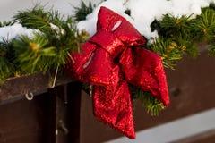 Κόκκινοι κλάδοι τόξων και έλατου οδός της Ρουμανίας διακοσμήσεων Δεκεμβρίου Χριστουγέννων caransebes του 2008 Στοκ Εικόνες
