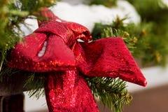 Κόκκινοι κλάδοι τόξων και έλατου οδός της Ρουμανίας διακοσμήσεων Δεκεμβρίου Χριστουγέννων caransebes του 2008 Στοκ φωτογραφία με δικαίωμα ελεύθερης χρήσης