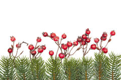 Κόκκινοι μούρα διακοσμήσεων Χριστουγέννων και κλαδίσκοι έλατου που απομονώνονται στο άσπρο υπόβαθρο Στοκ Φωτογραφίες