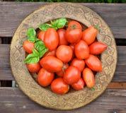 Κόκκινοι ντομάτες και βασιλικός Στοκ εικόνα με δικαίωμα ελεύθερης χρήσης