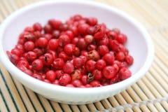 κόκκινοι σπόροι πιπεριών Στοκ εικόνα με δικαίωμα ελεύθερης χρήσης