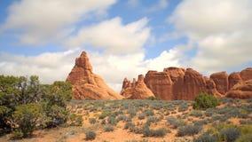 Κόκκινοι σχηματισμοί βράχου και πράσινο vegitation στην έρημο απόθεμα βίντεο