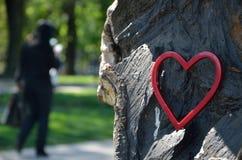 Κόκκινος αριθμός καρδιών στο πάρκο Στοκ Εικόνες