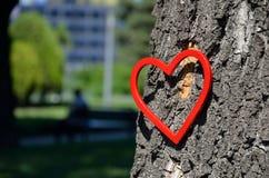 Κόκκινος αριθμός καρδιών στο πάρκο Στοκ εικόνα με δικαίωμα ελεύθερης χρήσης