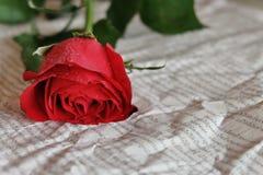 κόκκινος αυξήθηκε βαλεντίνος μορφής αγάπης καρδιών καρτών Στοκ Εικόνα