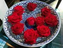 Κόκκινος αυξήθηκε επιπλέον σώμα λουλουδιών στο κεραμικό βάζο της Κίνας με το φωτισμό για το βαλεντίνο Στοκ Φωτογραφία