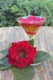 Κόκκινος αυξήθηκε και ένα ποτήρι του ποτού Στοκ Φωτογραφία