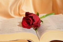 Κόκκινος αυξήθηκε και η Βίβλος, σύμβολα στοκ εικόνα