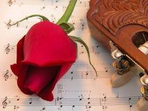 Κόκκινος αυξήθηκε και κιθάρα Στοκ Εικόνες