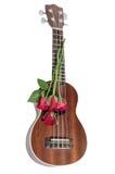 Κόκκινος αυξήθηκε και ukulele στοκ φωτογραφίες