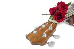 Κόκκινος αυξήθηκε και ukulele στοκ εικόνα με δικαίωμα ελεύθερης χρήσης