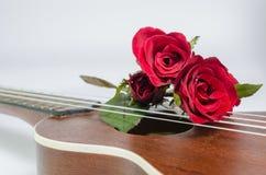 Κόκκινος αυξήθηκε και ukulele στοκ φωτογραφίες με δικαίωμα ελεύθερης χρήσης