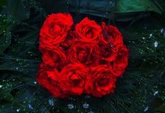 Κόκκινος αυξήθηκε κινηματογράφηση σε πρώτο πλάνο ανθοδεσμών Δονούμενη floral φωτογραφία σύστασης Αυξήθηκε λουλούδια στα πράσινα φ στοκ φωτογραφίες με δικαίωμα ελεύθερης χρήσης