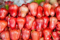 Κόκκινος αυξήθηκε μήλο Στοκ φωτογραφία με δικαίωμα ελεύθερης χρήσης