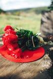 κόκκινος αυξήθηκε λουλούδια, δαχτυλίδια και γαμήλιο ντεκόρ ρομαντικό DIN Στοκ Εικόνα