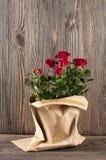 Κόκκινος αυξήθηκε λουλούδια paper-bag σε ένα ξύλινο υπόβαθρο Στοκ φωτογραφία με δικαίωμα ελεύθερης χρήσης