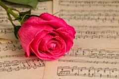 Κόκκινος αυξήθηκε λουλούδι και η μουσική σημειώνει το φύλλο Στοκ Φωτογραφία
