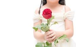 Κόκκινος αυξήθηκε σε λίγο κορίτσι χεριών που απομονώθηκε Στοκ φωτογραφία με δικαίωμα ελεύθερης χρήσης